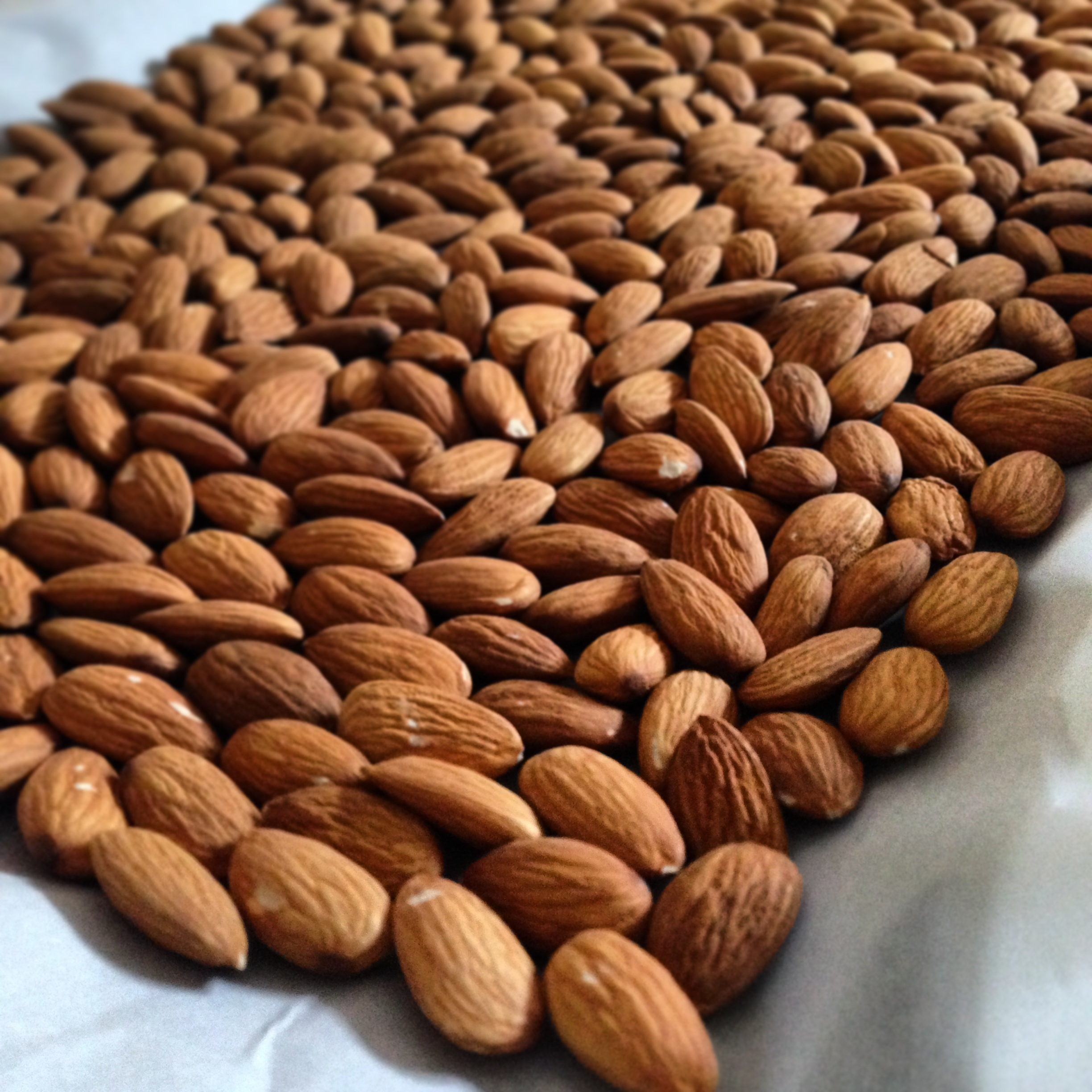 Roasted Almond|TheFitFoodieMama.com