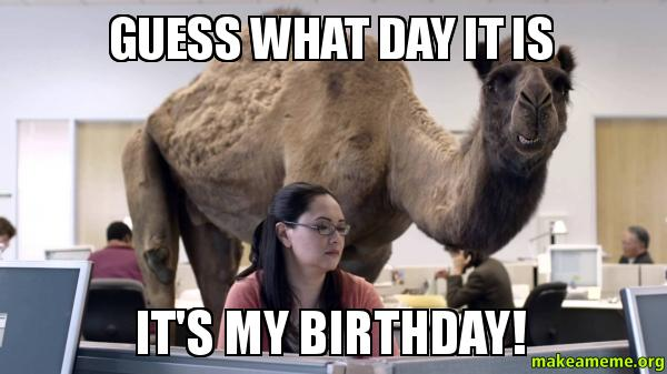 Hump Day Birthday Meme